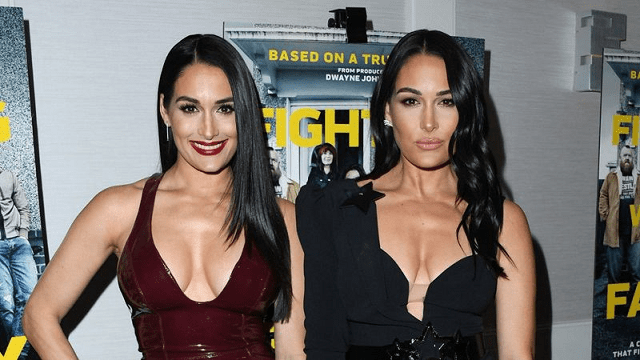 Nikki and Brie Bella